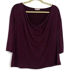 Silence & Noise Maroon Draped Cowl Neck Top